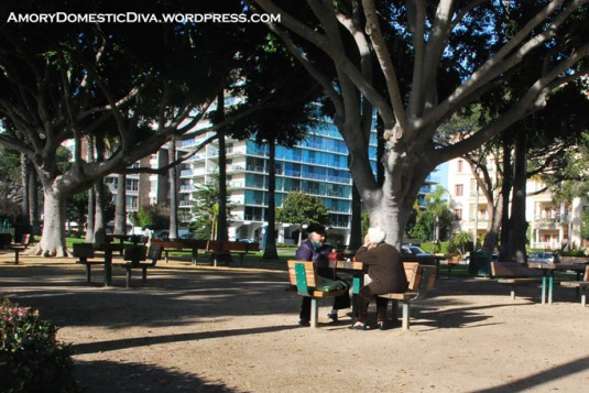 Palisades Park is also a perfect place for picnics. It has table sets around the park that give you a breathtaking view of the beach and the ocean.