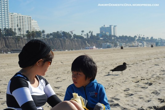 sta monica beach.picnic